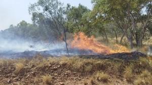 tennant fire